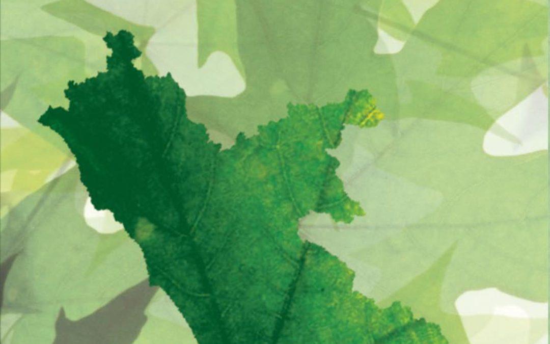 Sergio Bellucci, Fabio IndeoIl Lazio e la Green Economy